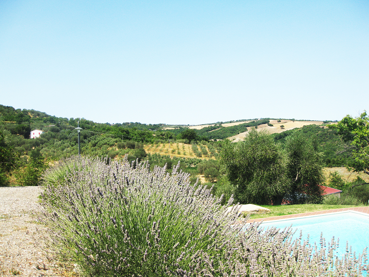 lavender_pool_tuscany