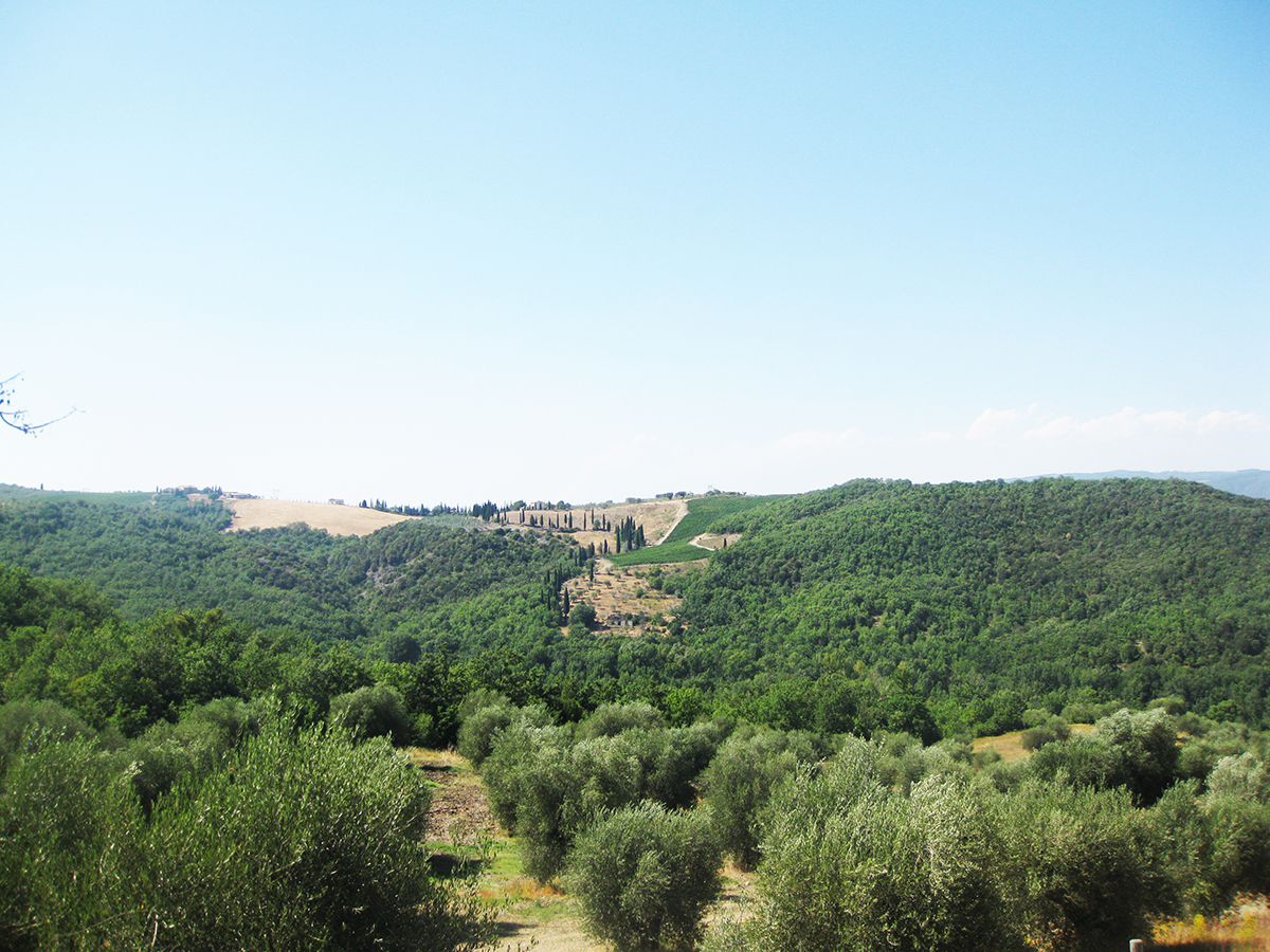 view_from_fam_tuscany