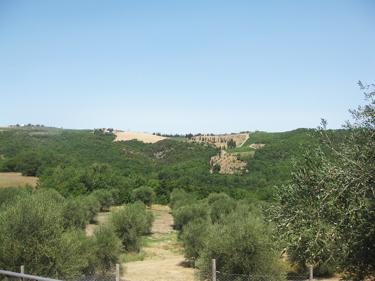 view_from_pool_tuscany3