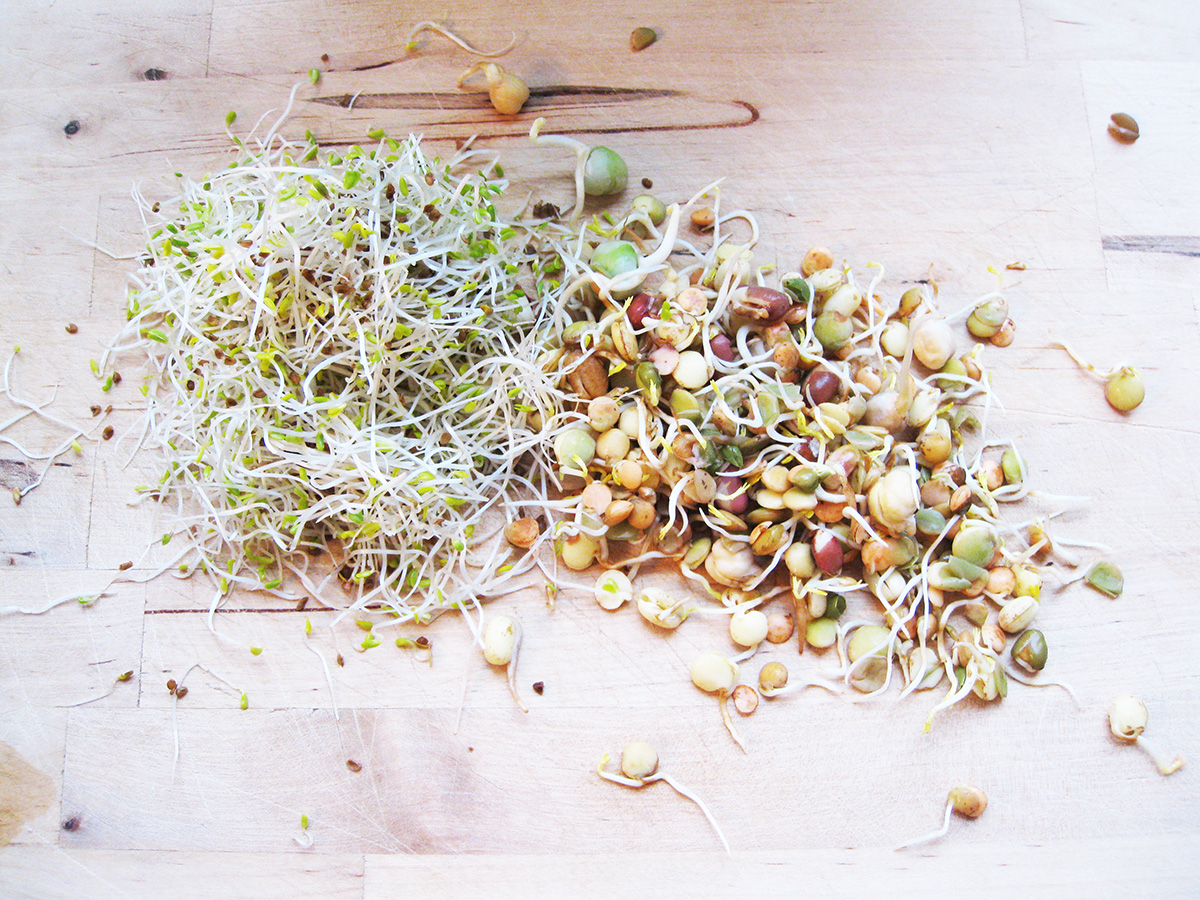 Gluten-Free_Dairy-Free_Superfood_Sprouts