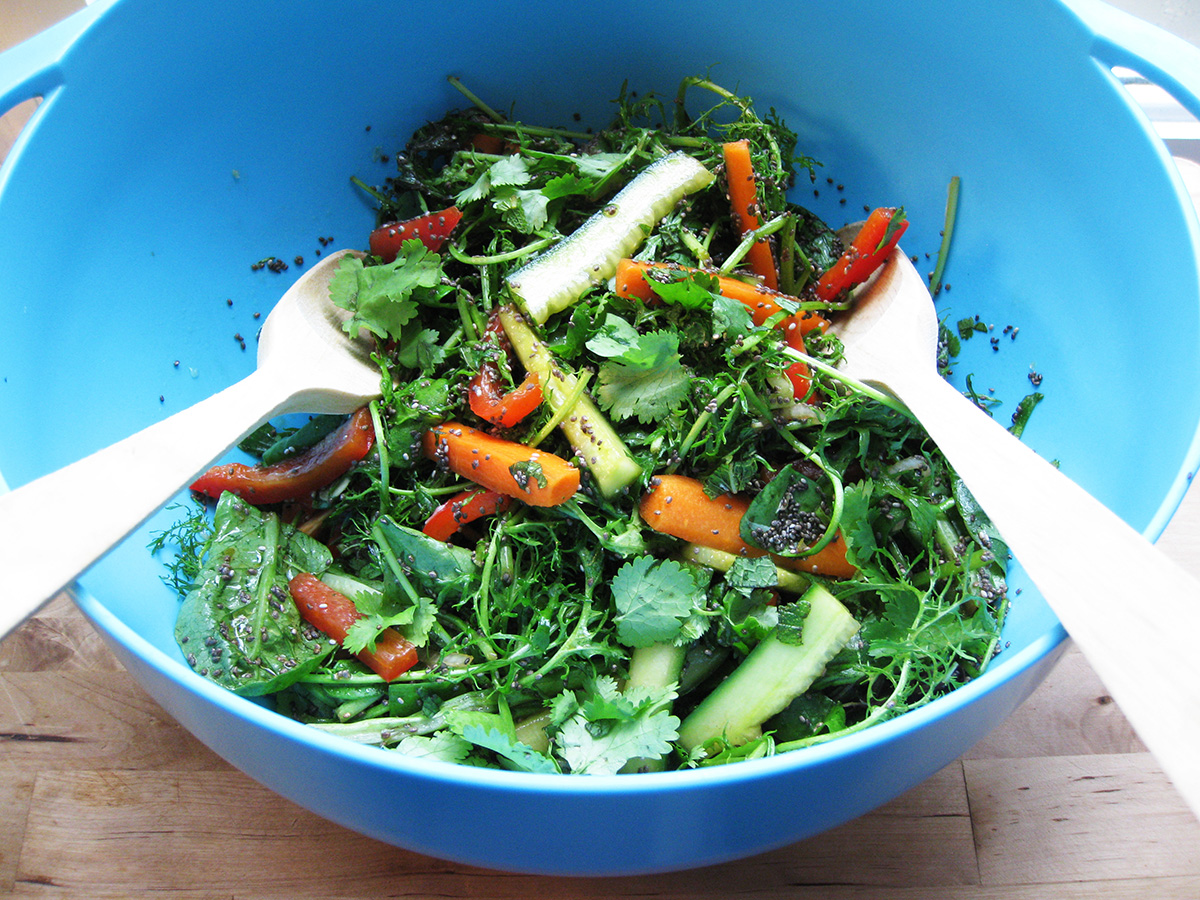 Gluten-Free_Dairy-Free_Chia_Seed_Salad